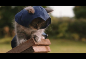 Catsassin's Creed - So habt ihr Assassin's Creed noch nicht gesehen