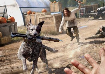 Far Cry 5 - Das sind die Patch Notes des neusten Patch 1.05